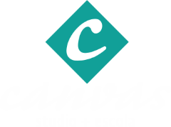 Studio Canvas